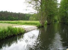 Gewässerschau 09.04.18
