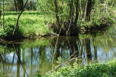 Vorschaubild zur Meldung: 15 - 16.06.18 GEO-Tag der Natur