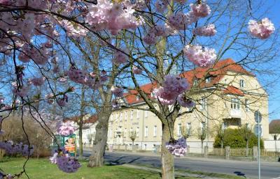 Hauptausschuss tagt am 11. April im Rathaus