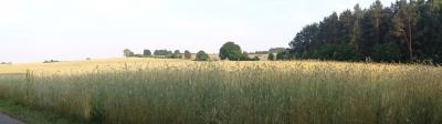Vorschaubild zur Meldung: Für 94% der Deutschen sind die Landwirtschaft und die ländlichen Gebiete wichtig.
