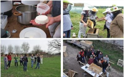 Foto zur Meldung: Brandenburger Jungbauern bringen mit Workshop-Programm Leben aufs Land