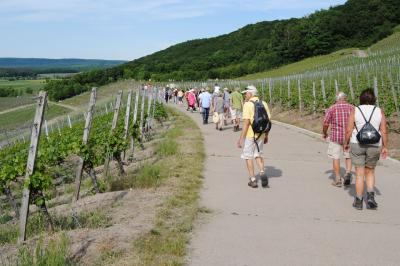 Vorschaubild zur Meldung: Wandern mit der Landrätin und Eröffnung der TraumRunde Kitzingen-Sulzfeld