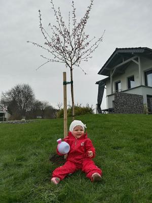 Luisa Reitz vor ihrem Baum