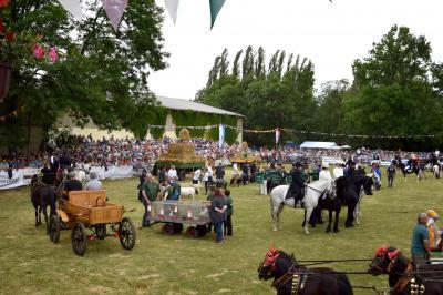Vorschaubild zur Meldung: Vorbereitung Landwirtschaftsfest