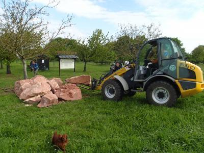ein Steinhaufen für Eidechsen wird angelegt