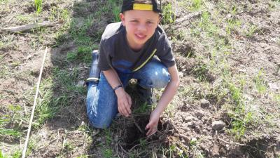 Foto zur Meldung: Baumpflanzaktion