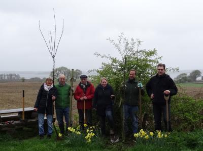 Foto zu Meldung: ABW pflanzt Apfelbäume