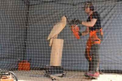 Vorschaubild zur Meldung: Kettensägenkunst von Micha Reichert auf der Mei Fescht-Bühne
