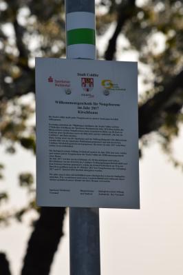 Vorschaubild zur Meldung: Nachholtermin - Einladung Übergabe Bäume an Neugeborene des Jahres 2017
