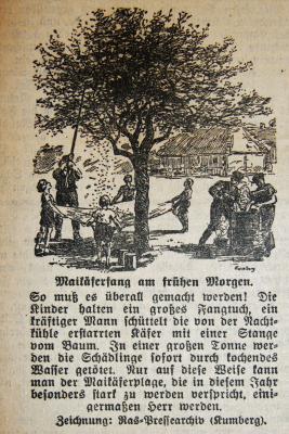 Foto zu Meldung: Vor 80 Jahren - Kampf dem Maikäfer