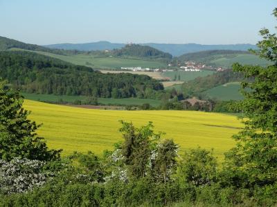Foto zur Meldung: Frühjahrsexkursion nach Rumerode/Birkenfelde