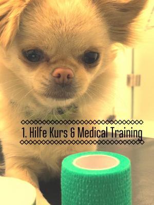 Erste Hilfe Tierarztpraxis Zimpfer