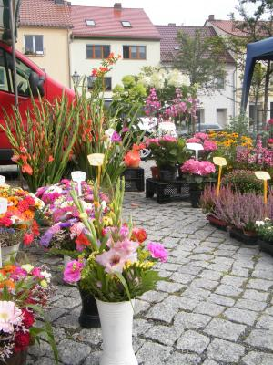 """Foto zu Meldung: Zweiter Heimatmarkt Calau am 23. Juni - """"regional geMacht"""""""