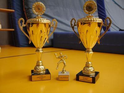 Vorschaubild zur Meldung: Gleich zwei Turniersiege für die JSG Buchberg