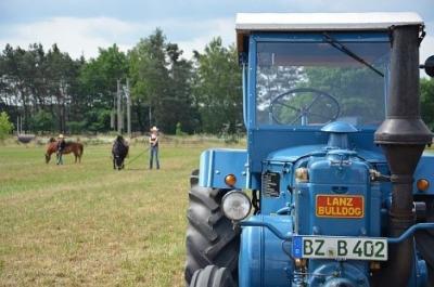 Foto zur Meldung: Ein Wochenende mit Landwirtschaft zum Anfassen für Groß und Klein: 24. Brandenburger Landpartie am 9. & 10. Juni auch in OSL