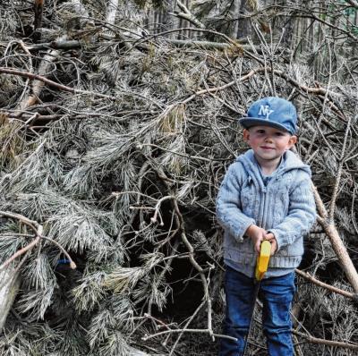 Foto zur Meldung: Groß Laasch - Kleine Strolche erkunden Unterholz