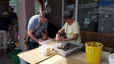Foto zur Meldung: Wir bauen ein Insektenhotel