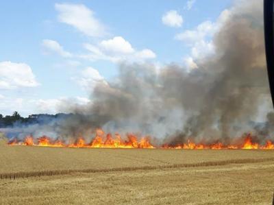 Foto zu Meldung: Feld brannte
