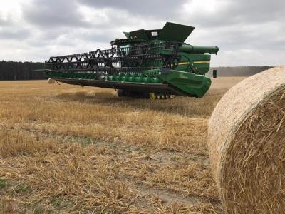 """Foto zur Meldung: Agrargenossenschaft """"Unterspreewald"""" in Dürrenhofe erntet die Wintergerste"""