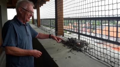 Herbert Bilang und die jungen Tauben auf dem Klutturm. Sie sollten weg, findet er.