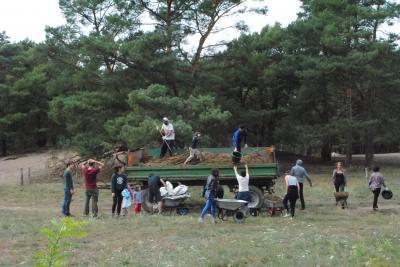 Foto zur Meldung: LAG-Mitglieder pflegen mit Freiwilligen die Binnendüne im Naturpark