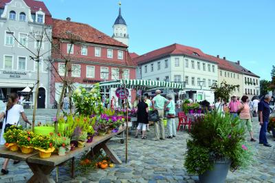 Vorschaubild zur Meldung: Tag der offenen Hinterhöfe und Herbstmarkt in Bischofswerda