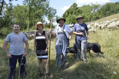 """Vorschaubild zur Meldung: Hessens Umweltministerin Priska Hinz besucht Beweidungsprojekt """"Bergwinkelgrün"""""""