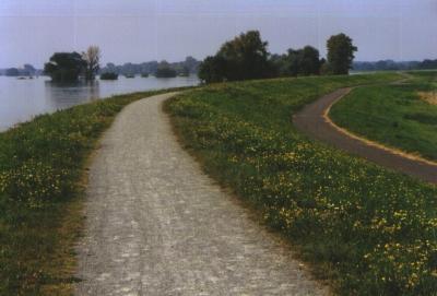 Der Elbdeich bei Hochwasser 2002. I Foto: Conny Marx