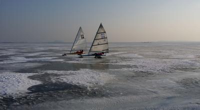 Foto zur Meldung: Eissegeln am Steinhuder Meer