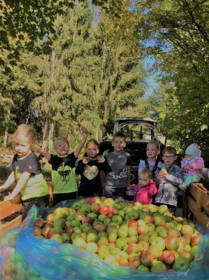 Vorschaubild zur Meldung: Apfelsaft für den Kindergarten