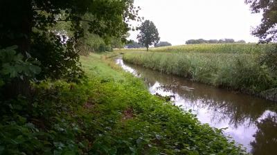 Die untere Wörpe im Landkreis Osterholz-Scharmbeck soll oberhalb des Hainstaus gesperrt werden