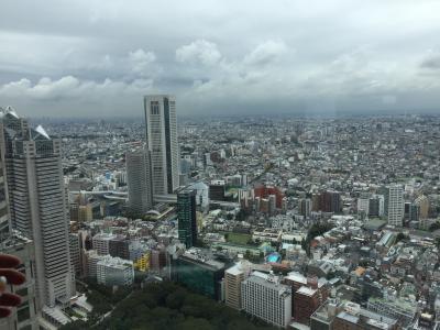 Skyline von Tokio, aufgenommen von der Aussichtsplattform des Rathauses