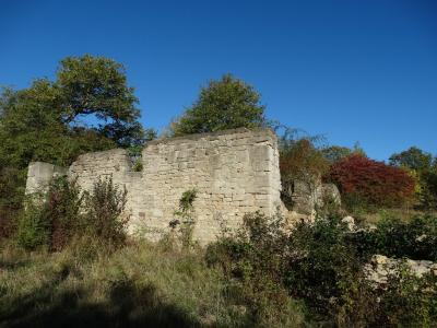 Ruine des ehemaligen Gutshauses. Foto: H. Hartung (30.09.2018)