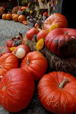 """Vorschaubild zur Meldung: BurgArt am 7. Oktober 2018  """"Goldener Herbst"""" auf der Burg in Neustadt-Glewe"""