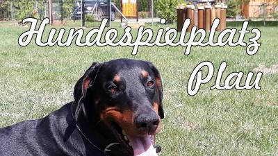 Vorschaubild zur Meldung: sonntags Hunde-, Caférunde auf der Hundewiese