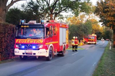 Vorschaubild zur Meldung: Einsatz: Feuerwehr löscht größeren Reethaufen