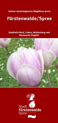 Vorschaubild zur Meldung: Besondere Bäume in Fürstenwalde Nord: Kleiner dendrologischer Wegführer erschienen