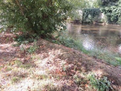 Vorschaubild zur Meldung: Gartenabfälle ins Gewässer ???