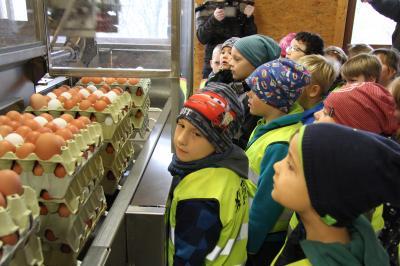 An der Eierverpackungsmaschine konnten die Kinder miterleben, wie die Eier in die Kartons verpackt wurden