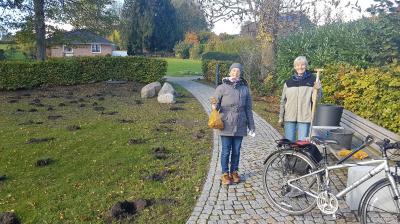 Vorschaubild zur Meldung: Dorfplatz Borgwedel bepflanzt
