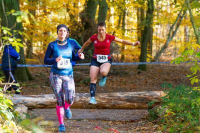 Foto zur Meldung: Crosslauf-Landesmeisterschaften im Laager Stadtwald