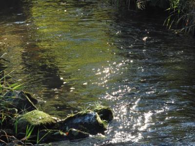 Vorschaubild zur Meldung: Ablesen der Wasserzähler