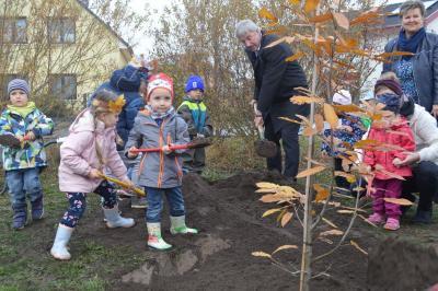 """Foto zur Meldung: Kita """"Schwalbennest"""" pflanzt den Baum des Jahres am Spielplatz Schwarzburger Straße"""