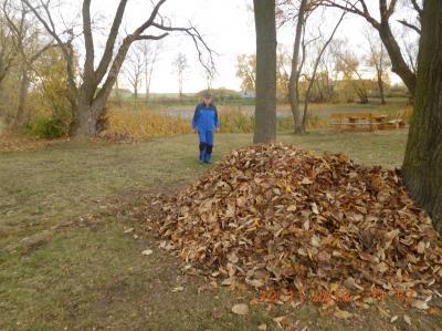 Foto zur Meldung: Herbstputz in Hohengörsdorf