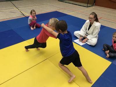 Vorschaubild zur Meldung: Tag des Judos