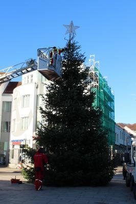 Vorschaubild zur Meldung: Die Weihnachtstanne auf dem Rügen-Platz leuchtet