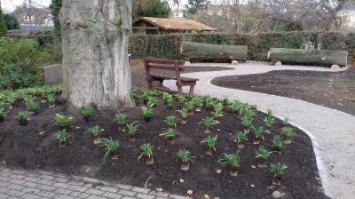 Foto zur Meldung: Weitere Pflanzaktionen der Gemeinde Holzwickede