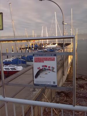Wasserburger Fischerhafen