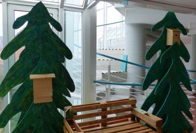 """Ab 7. Dezember und auch beim Hochstädter Weihnachtsmarkt ist die Ausstellung der EKS mit dem Titel """"Natur pur"""" im Rathaus zu sehen."""