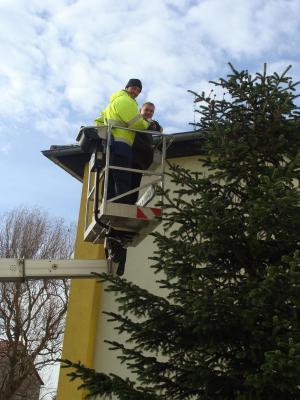 Foto zur Meldung: Grundschule mit Weihnachtsbaum geschmückt